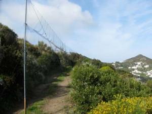 """La pratica di """"parare le reti"""" in alcune zone particolari ha lasciato segni nella toponomastica - zona le Parate, ossia i Due Golfi"""