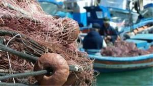 """La rete da pesca a strascico, detta """"sciavichiello"""" era la preferita per catturare le quaglie"""
