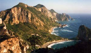 Palmarola, piccola isola dell'arcipelago pontino deve il suo nome alla grande diffusione, sul suo territorio, della palma nana